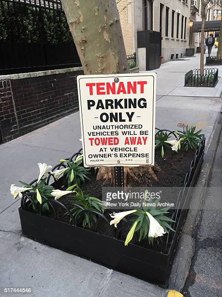 The famed singer Madonna is in hot water after her minions concocted a scheme to steal public parking spaces by posting 'Tenant Parking Only' in...