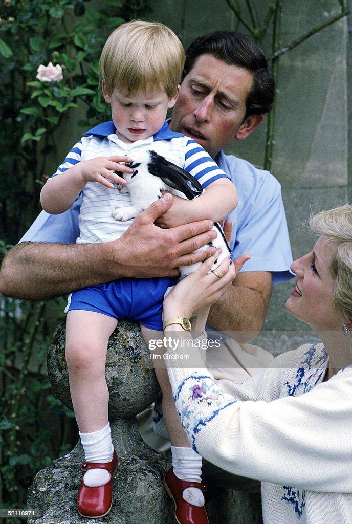 Charles Diana Harry : News Photo