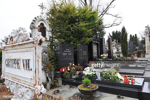 The family tomb of Peter Alexander Ferdinand Maximilian Neumayer alias Peter Alexander is pictured at Grinzinger Friedhof cemetery on February 18...