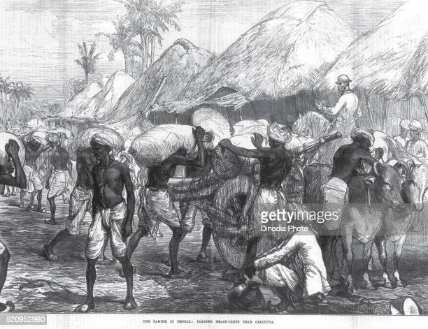 The Famine in Bengal Loading Grain Carts near Calcutta, West Bengal, India