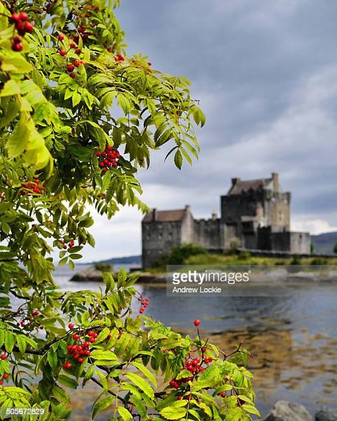 CONTENT] The famous and iconic Eilean Donan Castle near Dornie Kyle of Lochalsh Highlands Scotland