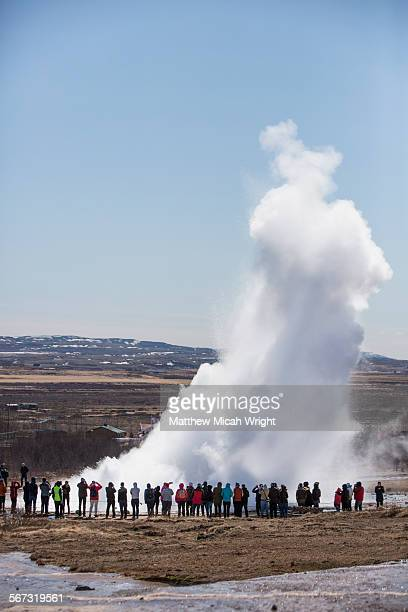 The famous Strokkur geyser of Iceland