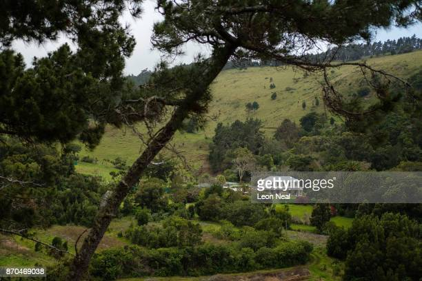 The Farm Lodge hotel is seen among the trees on October 23 2017 near Rosemary's Plain Saint Helena Following the introduction of weekly flights to...