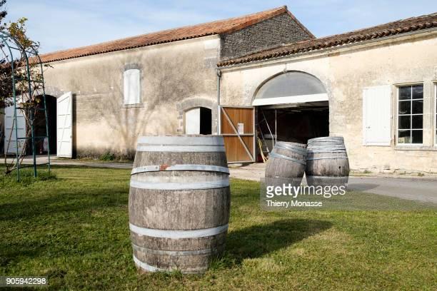The farm of Guy Pinard Organic farming Cognac and Pineau des Charentes producer