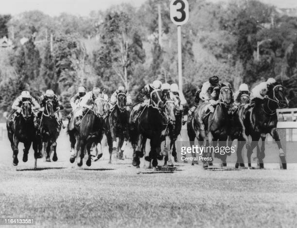 The field at the home turn during the Melbourne Cup race at Flemington race course in Melbourne Australia 7th November 1967 The race was won by...