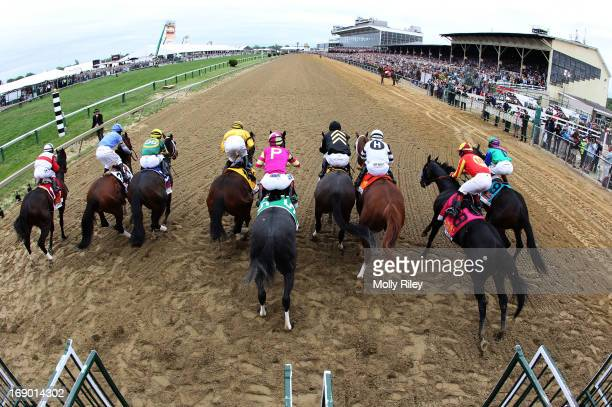 The field breaks the gate at the start of the 138th running of the Preakness Stakes at Pimlico Race Course on May 18 2013 in Baltimore Maryland
