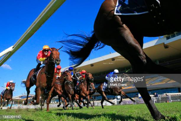 The field chases winner Tim Clark on Silent Impact in race 1 the Elite Sand & Soil Handicap during Sydney Racing at Rosehill Gardens on July 24, 2021...