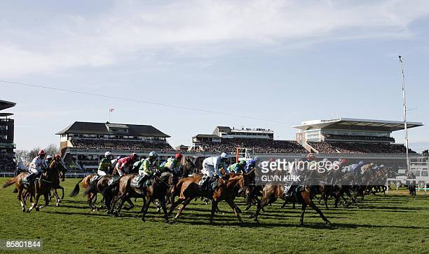 The field gets away from the gates following two false starts during the Grand National Steeple Chase on the third day of the Grand National meeting...