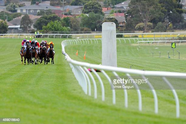 The field heads up the straight during first lap of Race 4 the Sportingbet Sandown Cup during Melbourne Racing at Sandown Hillside on November 15...
