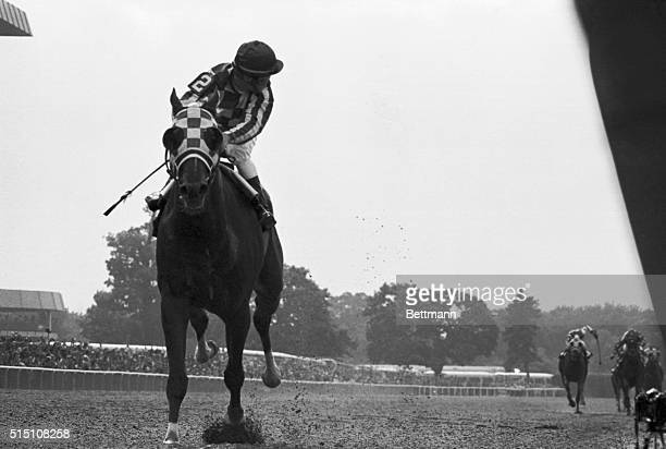 The field is so far behind that jockey Ron Turcotte has to turn in the saddle to look for it as he guides 'Secretariat' across the line to win by 31...