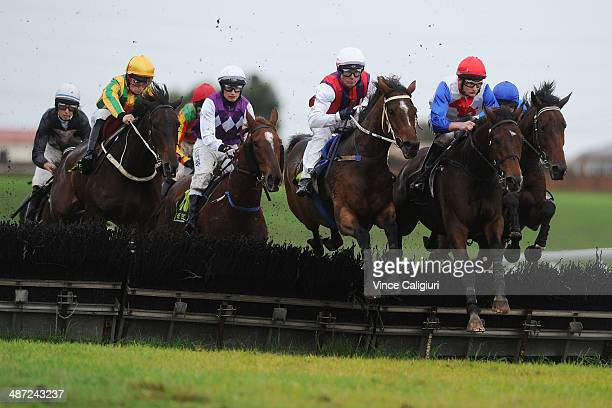 The field jump the second last hurdle in the MRC $300000 jumps bonus maiden Hurdle during the Warnambool May Racing Carnival on April 29 2014 in...