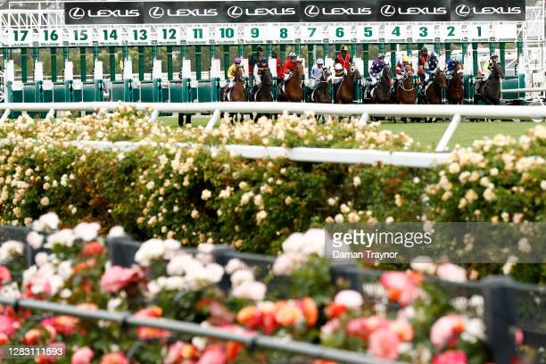 The field jumps in race 4 the Lexus Hotham Stakes during 2020 AAMI Victoria Derby Day at Flemington Racecourse on October 31, 2020 in Melbourne,...