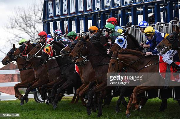 The field jumps out of the starting gates in Race 5 during Melbourne Racing at Caulfield Racecourse on July 30 2016 in Melbourne Australia