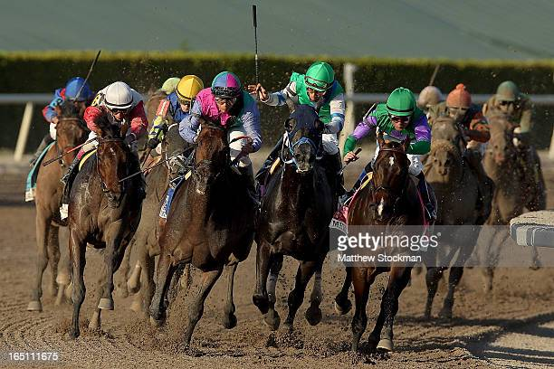 The field lead by Kent Desormeaux riding Merit Man comes around turn four during the Florida Derby at Gulfstream Park on March 30 2013 in Hallandale...