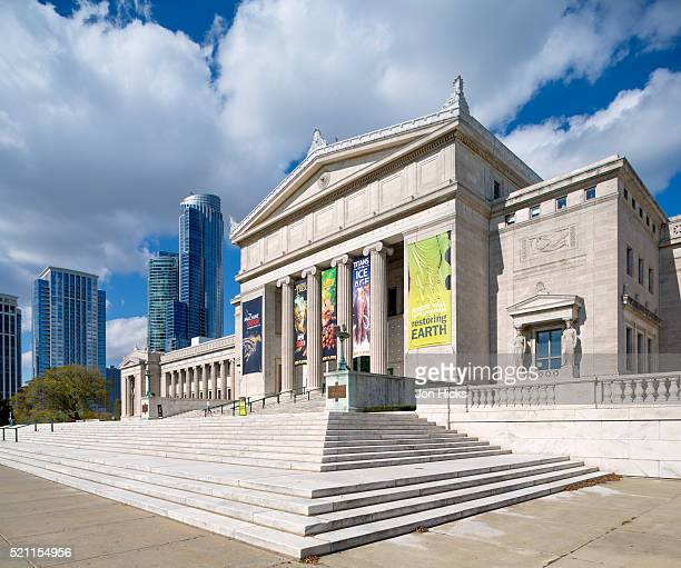 the field museum of natural history, chicago. - field museum of natural history stock pictures, royalty-free photos & images
