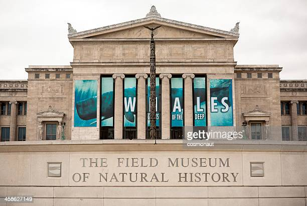 The Field Museum of Natural History in Chicago