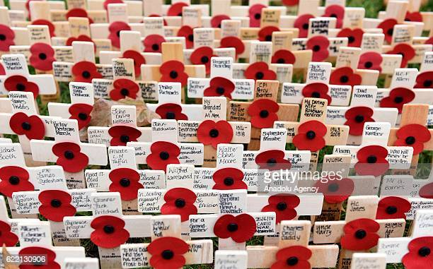 The Field of Remembrance at Westminster Abbey on November 10th 2016 in London England