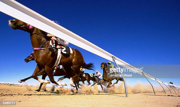 The field rounds the bend onto the final straight in the Birdsville Cup