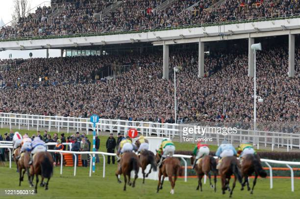 The finish of the first race in front of the packed stands during day four of the Cheltenham National Hunt Racing Festival at Cheltenham Racecourse...