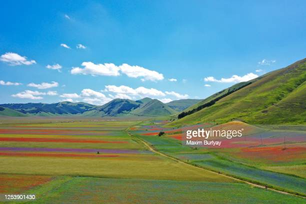 the fiorita, the flowering of castelluccio di norcia, aerial view by drone - castelluccio stock pictures, royalty-free photos & images