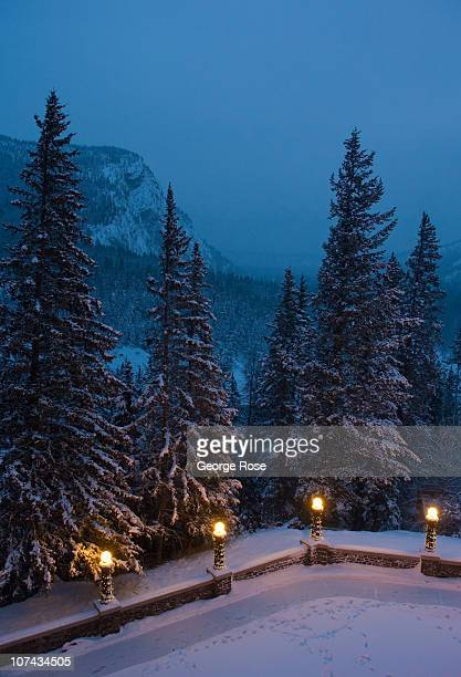 The fir trees outside the Fairmont Hotel are coated with a fresh layer of snow on November 23 2010 in Banff Springs Canada The Canadian Rockies have...