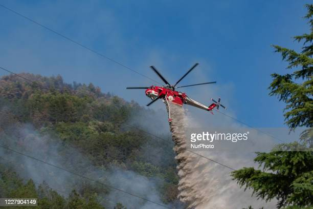The fires of recent days in the Abruzzo national park, on the slopes of the Gran Sasso, threaten the Abbruzzese capital. Numerous men employed,...