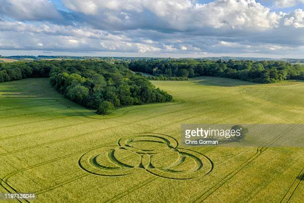 The first crop circle of the season appears at Long Wood in Hampshire on June 09, 2019 near Littleton, Winchester, United Kingdom. Crop circles often...