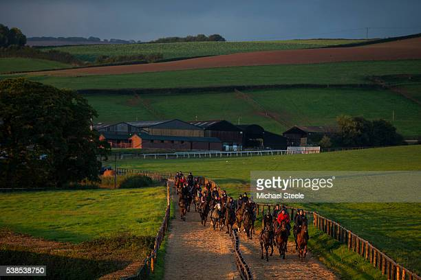 The first lot head to the woodchip gallop turn at Sandhll Racing Stables on October 14 2015 in Minehead England Sandhill Racing Stables set in 500...