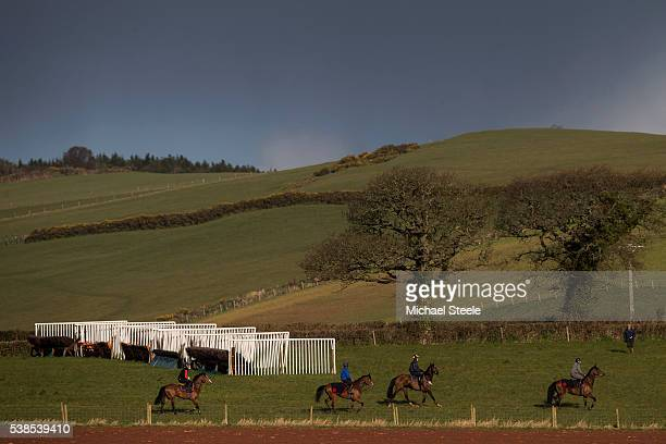 The first lot up on the schooling ground at Sandhill Racing Stables on March 30 2016 in Minehead England Sandhill Racing Stables set in 500 hundred...