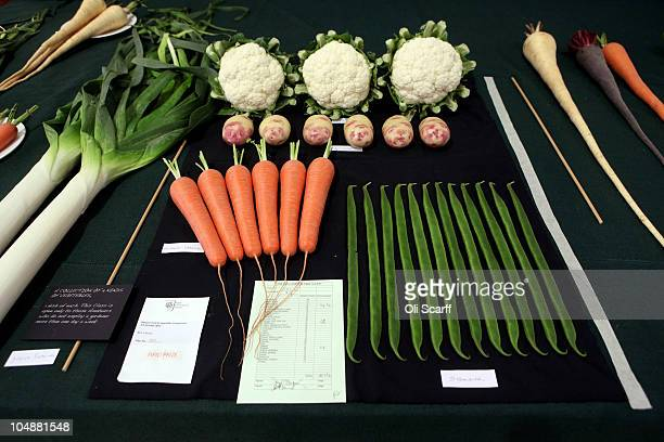 The first prize in the 'Collection of 4 kinds of Vegetable' category won by Mrs S Plumb are displayed at the Royal Horticultural Society's London...