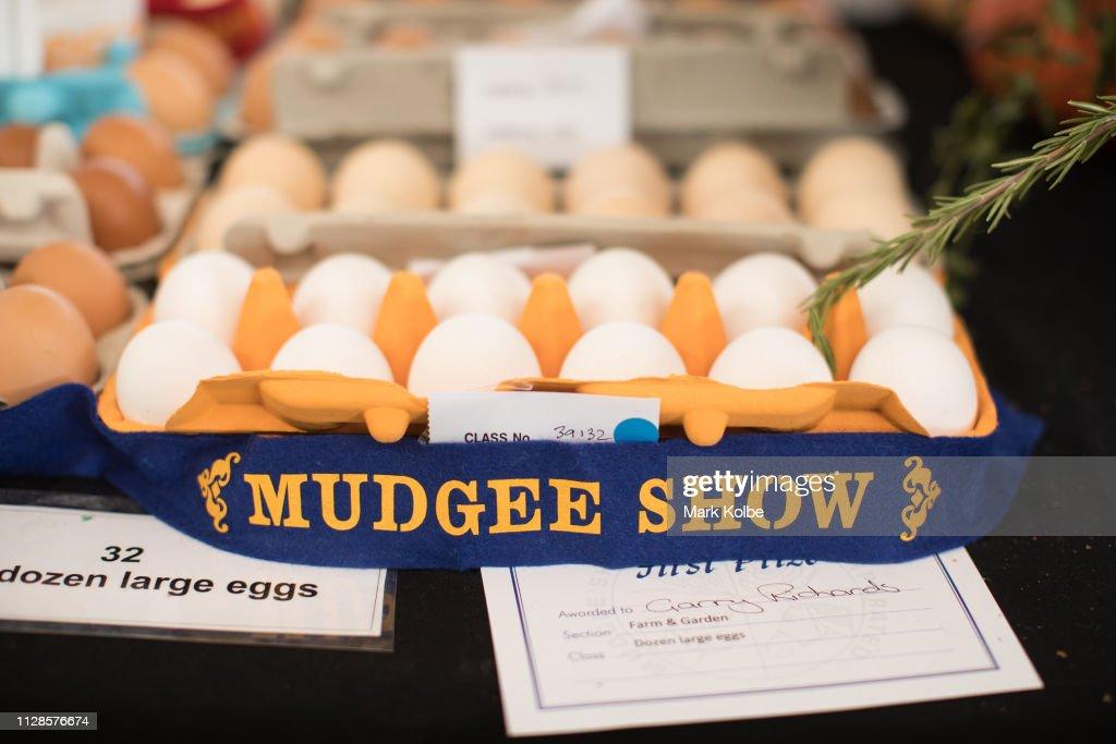 AUS: Locals Enjoy 2019 Mudgee Show