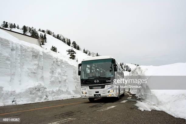 The first sightseeing bus runs between 6metrehigh snow walls as the Tateyama Kurobe Alpine Route partially reopens on April 6 2015 in Tateyama Toyama...