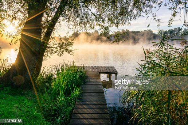 the first sunrays at wesslinger see - boardwalk stock pictures, royalty-free photos & images