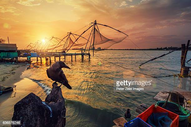 the fishermen's harbour in fort kochin, kerala, india. - kochi india stock pictures, royalty-free photos & images