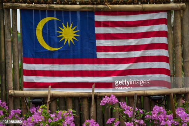 """the flag of malaysia, also known as the malay """"jalur gemilang"""" is composed of a field of 14 alternating red and white stripes along the fly and a blue canton bearing a crescent and a 14-point star. - shaifulzamri 個照片及圖片檔"""