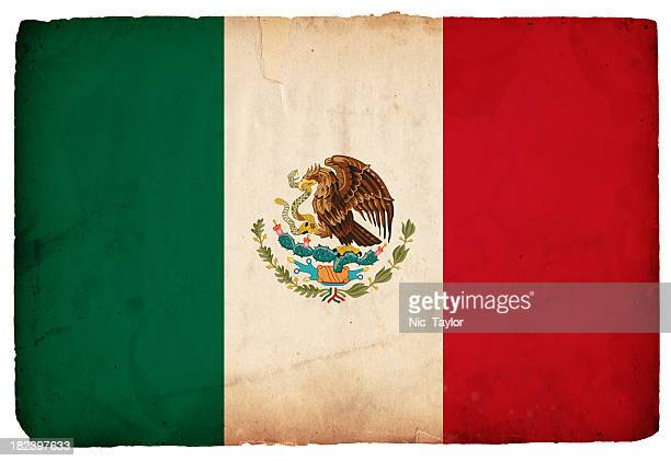 The flag of Mexico on a white background