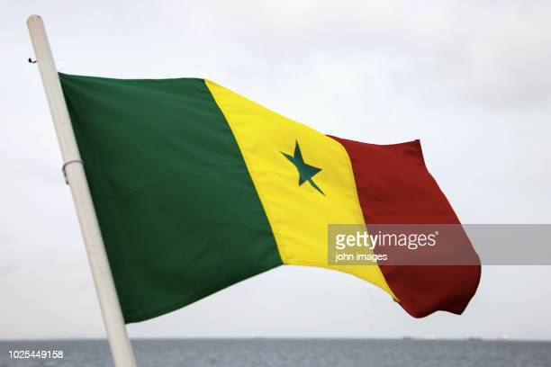 the flag of senegal floats - senegal stock pictures, royalty-free photos & images