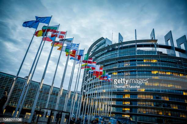 The flags of the member states of the european union are blowing in the wind in front of The European Parliament on January 15 2019 in Strasbourg...