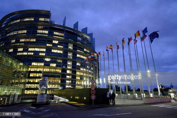 The flags of the member states of the European Union blow in the wind at dusk in front of the European Parliament on November 27, 2019 in Strasbourg,...