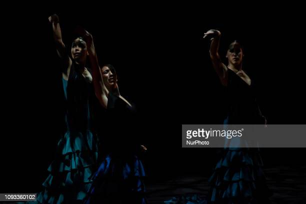 The flamenco dancer Sara Baras during her show quotSombrasquot at the Palacio de Festivales in Santander Spain on 2 February 2019