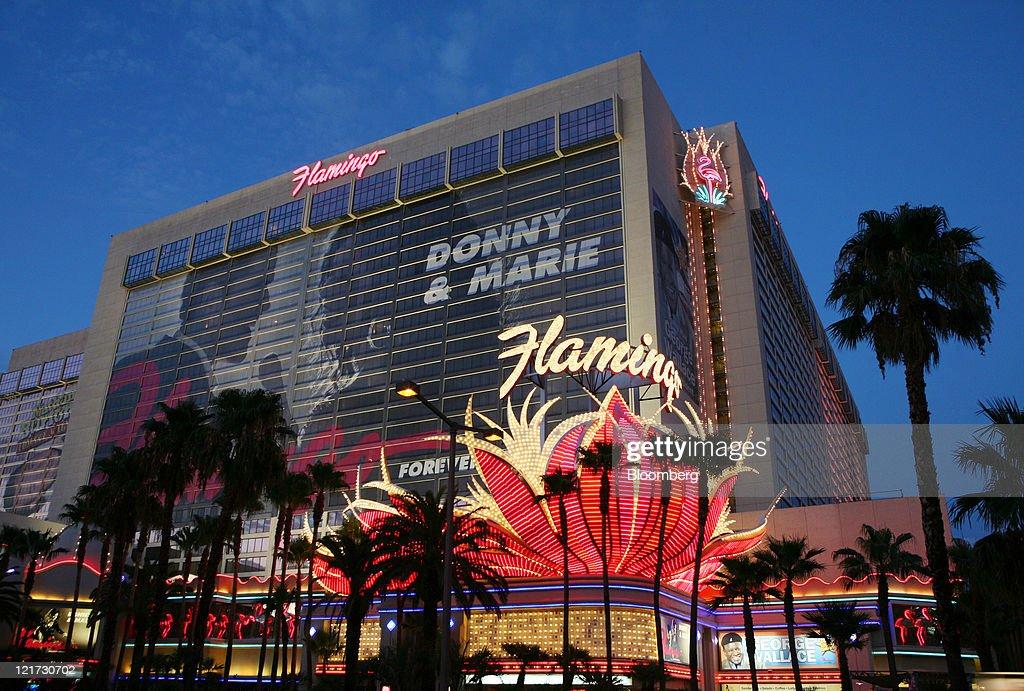 Flamingo hotel las vegas sex