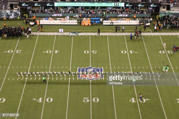 The Flight Crew cheerleaders of the New York Jets in action against the Buffalo Bills at MetLife Stadium on November 2 2017 in East Rutherford New...