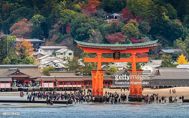 The Floating Torii or Great floating gate on Miyajima island near Itsukushima shinto shrine.During low tide, visitors can take the opportunity to...