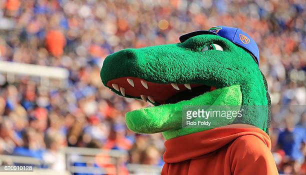 The Florida Gators mascot Albert looks on during the game against the Georgia Bulldogs at EverBank Field on October 29 2016 in Jacksonville Florida