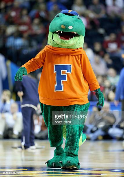 The Florida Gators mascot performs in the game against the Alabama Crimson Tide druing the second round game of the SEC Basketball Tournament at...