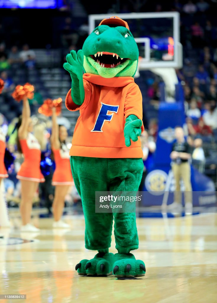 The Florida Gators mascot performs in the game against the