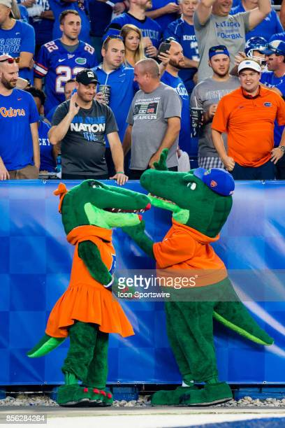 The Florida mascot trying to get a high five from a Kentucky Wildcat fan during a regular season college football game between the Florida Gators and...