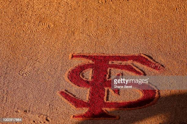 The Florida State logo is displayed during game twogame two of the Division I Women's Softball Championship held at USA Softball Hall of Fame Stadium...