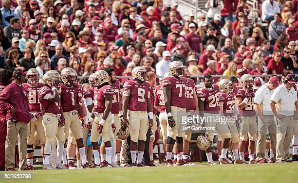 The Florida State Seminoles bench watces a play during the game at Doak Campbell Stadium on November 14 2015 in Tallahassee Florida The Florida State...