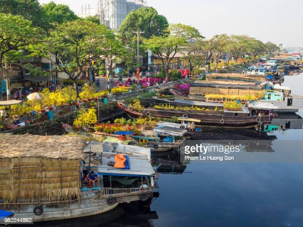 the flower market in ho chi minh city, vietnam. - vietnam stock pictures, royalty-free photos & images